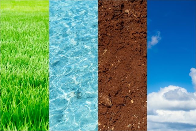 Ecology Of Nature Banner Concept. Green Plant Blue Water Fertile